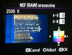 RAW Processing menu yang sangat berguna bagi pemain studio