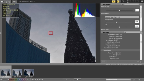 Picture Style : Normal dan D-Lighting Normal
