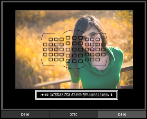 Focus modul pada Nikon D810