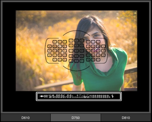 focus modul pada Nikon D750
